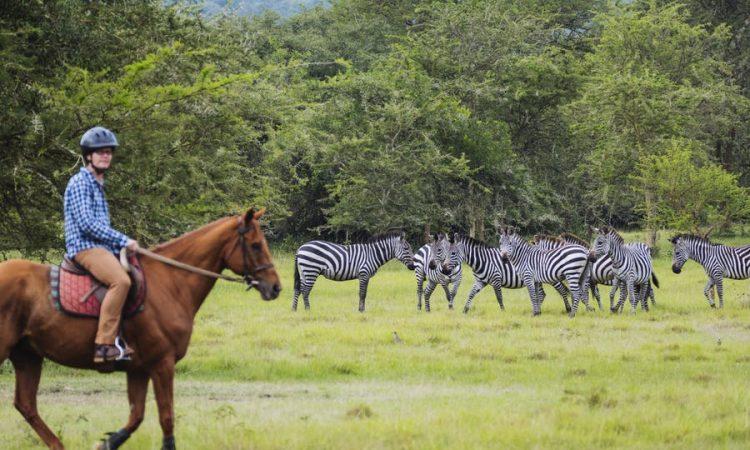 2 Days horseback riding safari in Lake Mburo