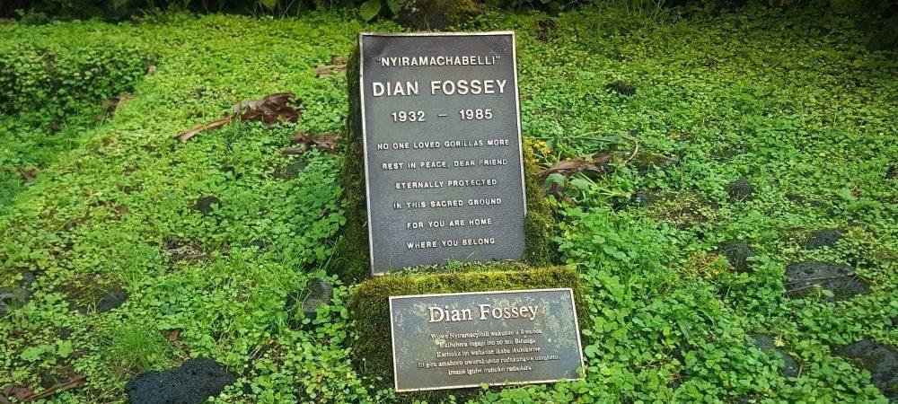 Dian Fossey hike in Rwanda