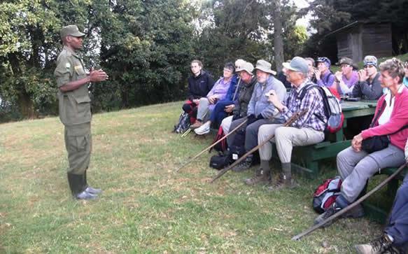 Rules and Regulations for Gorilla Trekking in Rwanda