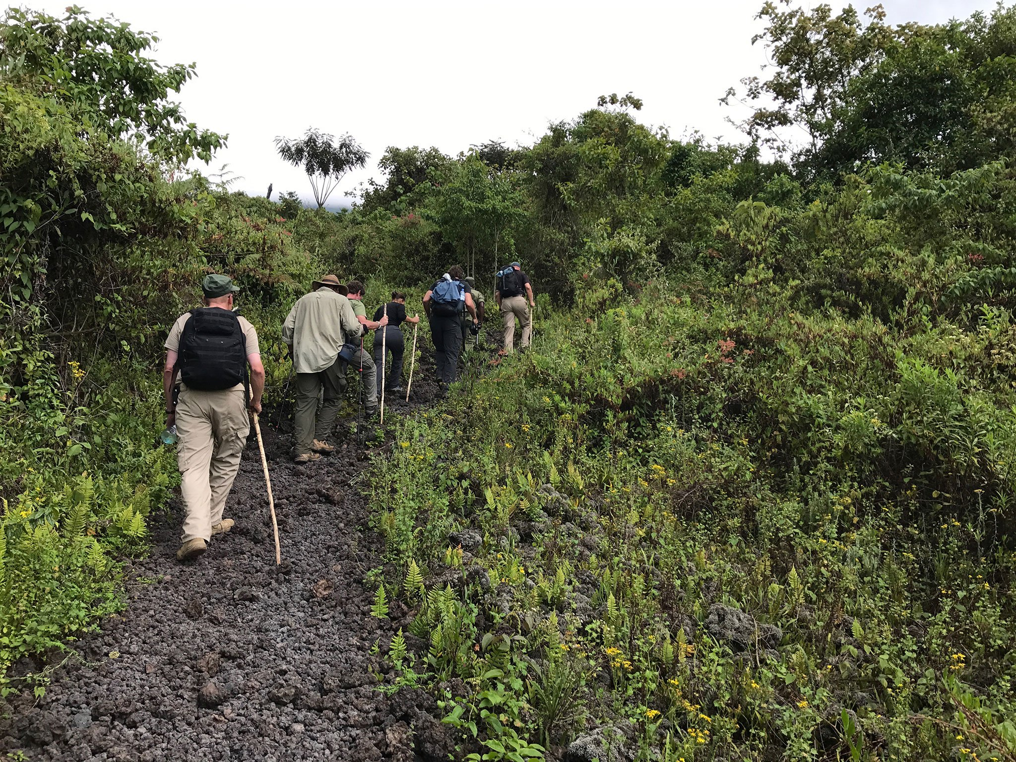 Activities in Kahuzi Biega National Park