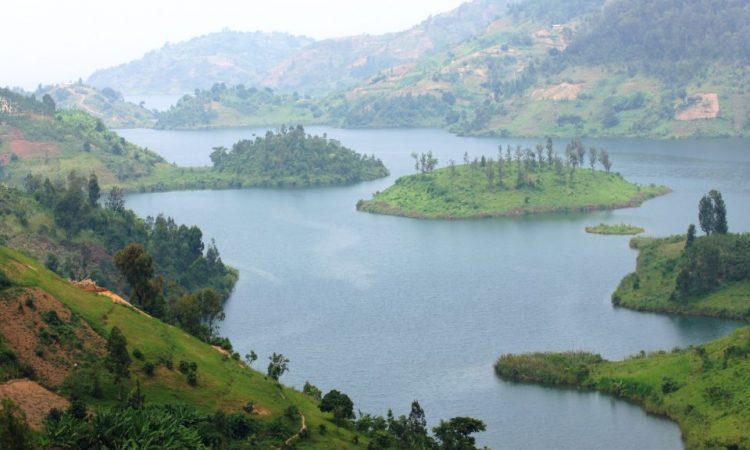 Lake Kivu Safari