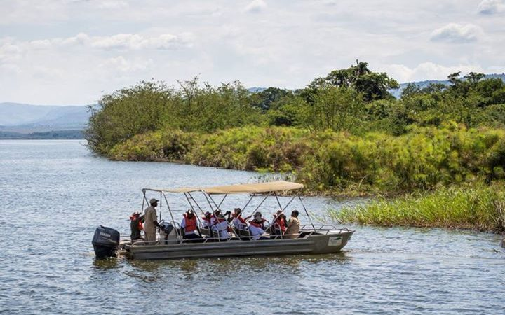Activities in the Akagera National Park
